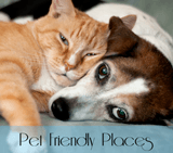 pet friendly button